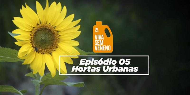 Hortas Urbanas é o tema do quinto episódio da Websérie Documental Viva Sem Veneno. Confira!